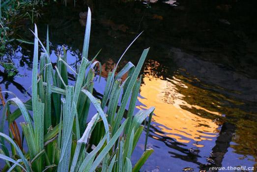 belsky-voda-vz.jpg