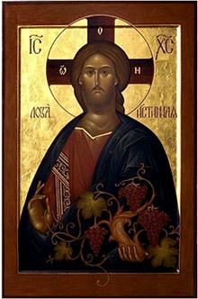 jezis-kristus-pravy-vinny-kmen-upr-men-3.jpg