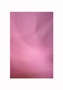 kvet-019-vyr-ram-3.jpg